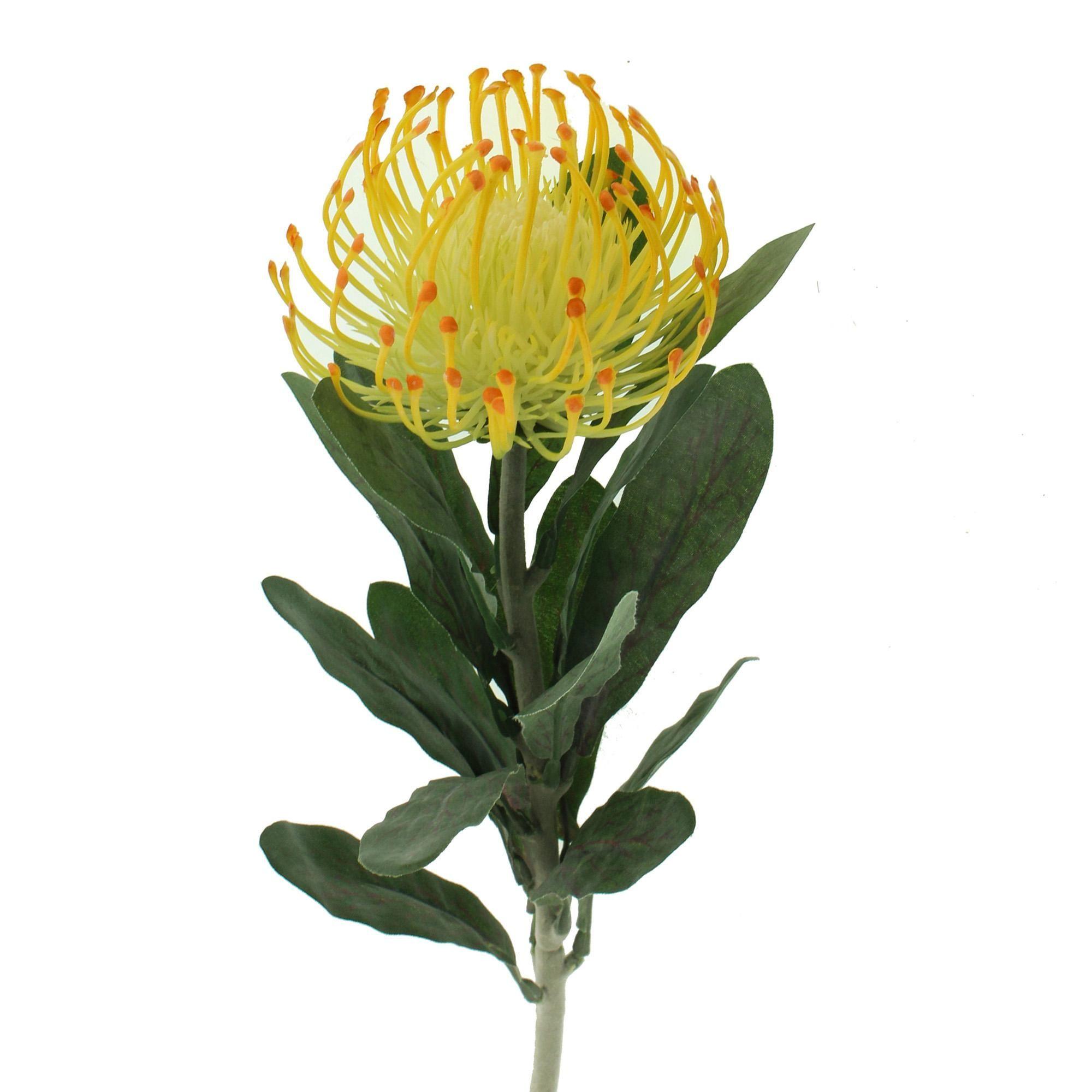 Dunelm Floral Yellow Artificial Pincushion Protea Protea