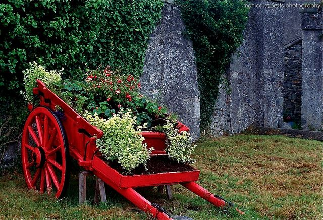 old red pony trap in front of church ruins ... Downpatrick, Co. Down Northern Ireland