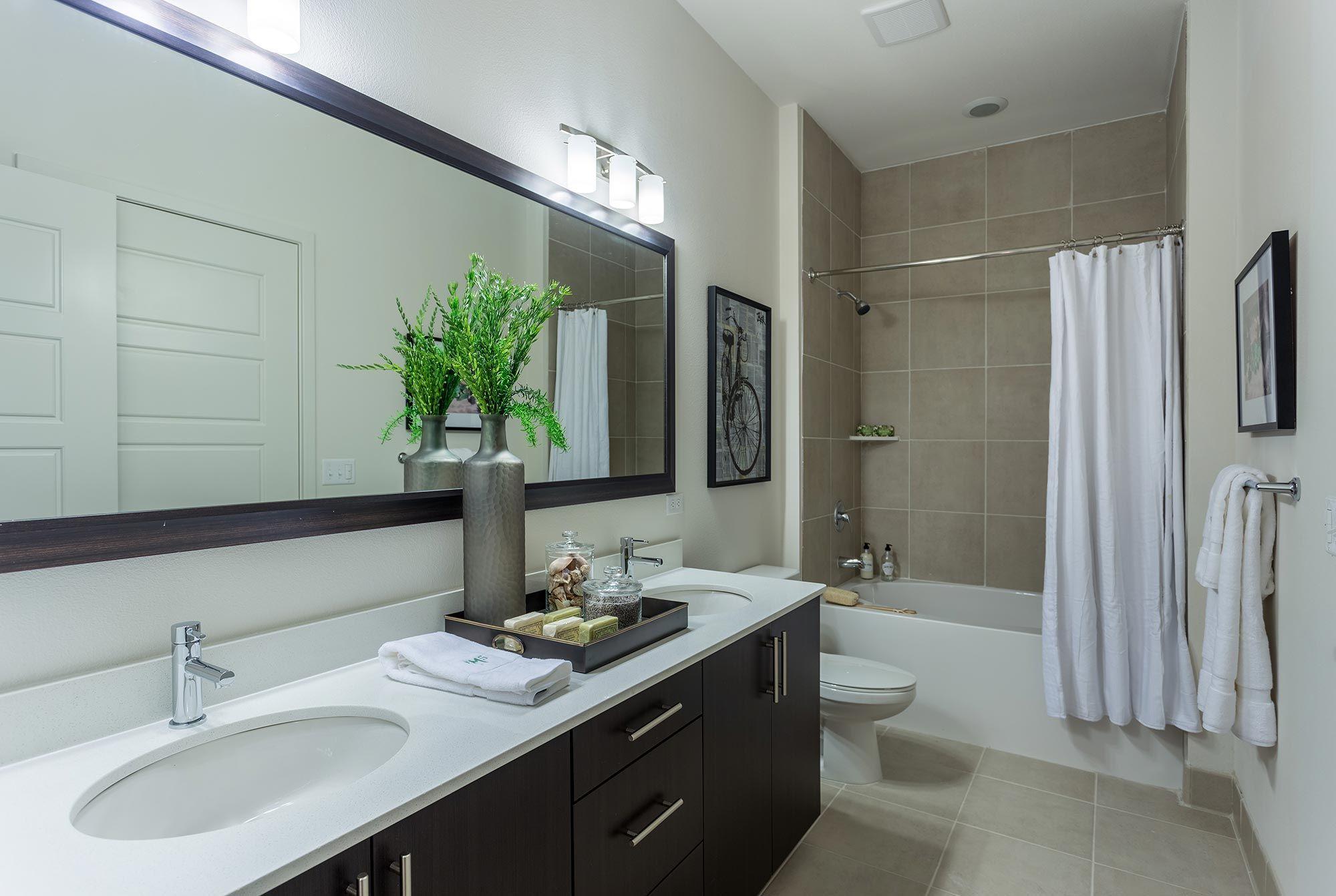 Luxury Apartments in Austin, Texas Millennium Rainey