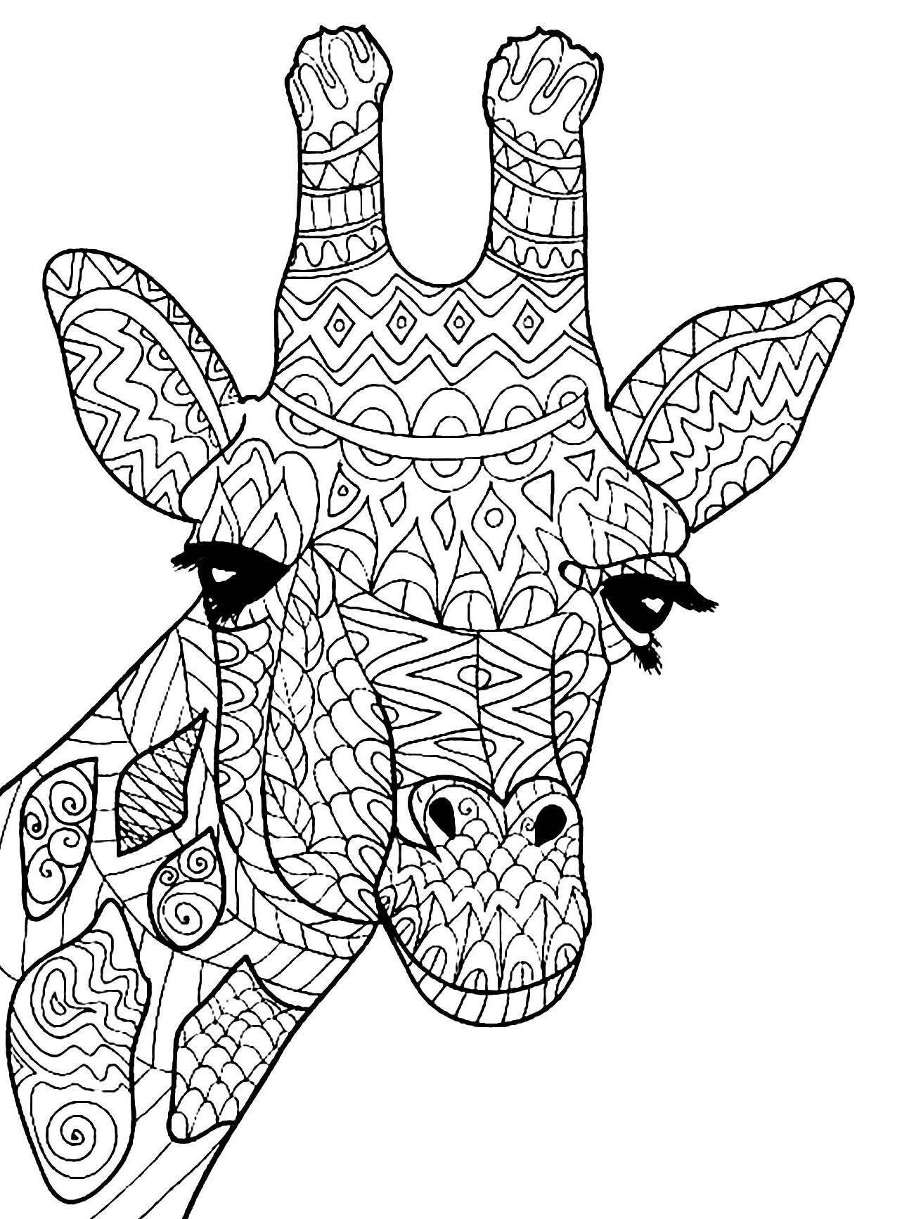 Giraffe Coloring Page Animal Coloring Page Adult Coloring Page