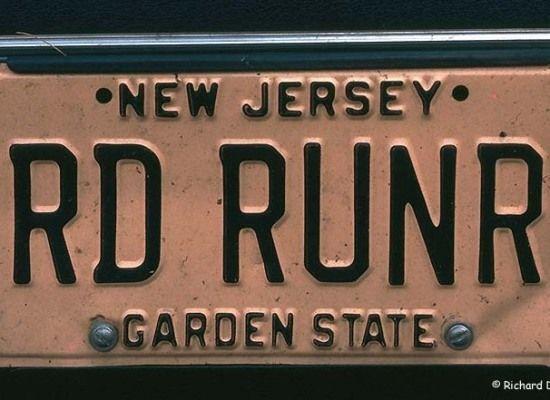 Road Runner Funny License Plates Vanity License Plates Personalized License Plates