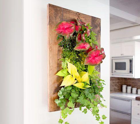 Grovert Wall Planter  Light Oak By Bright Green Living