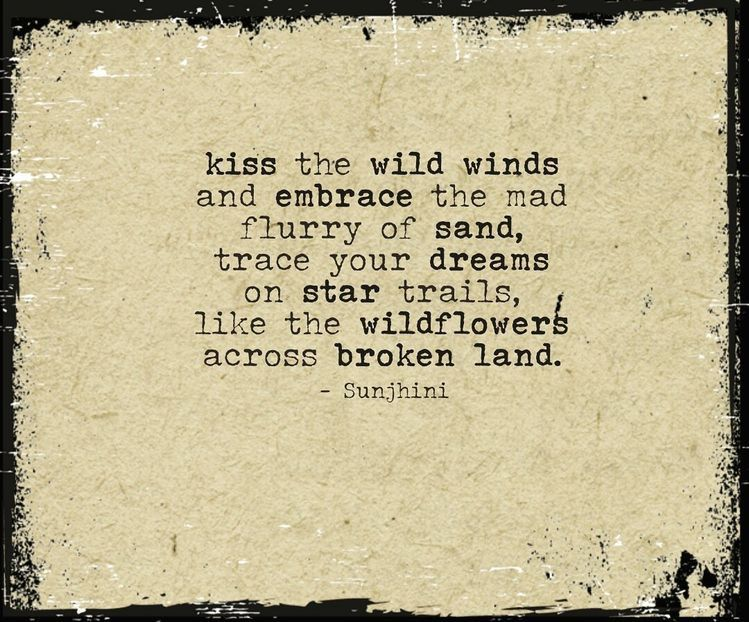 She's like the wind image by Jill in 2020 | Wind quote ...