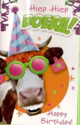 gekke verjaardagskaart Knotsgekke verjaardagskaart met een gekke koe Grappige  gekke verjaardagskaart