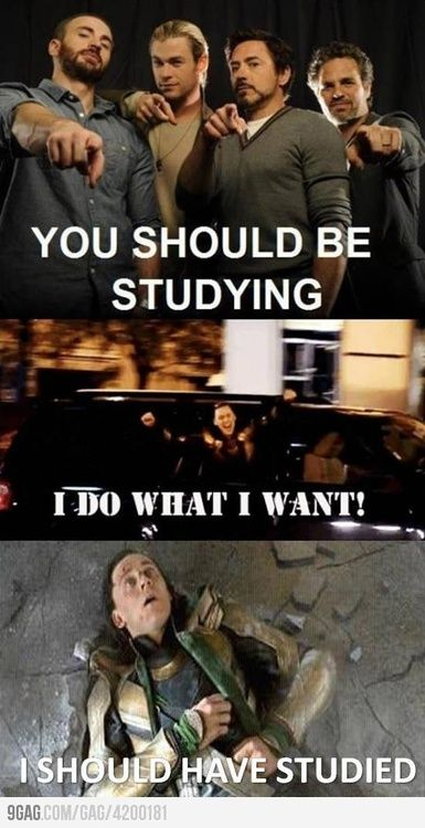 you should be studying | Tumblr