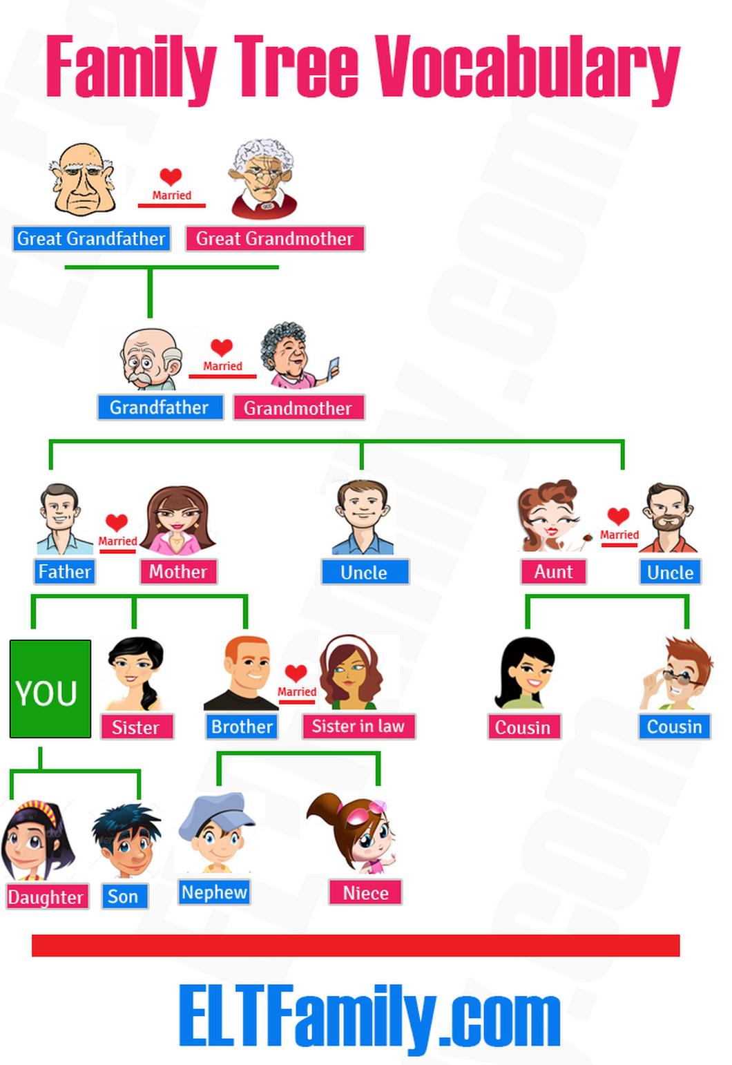 Family tree vocabulary: … | Pinteres…