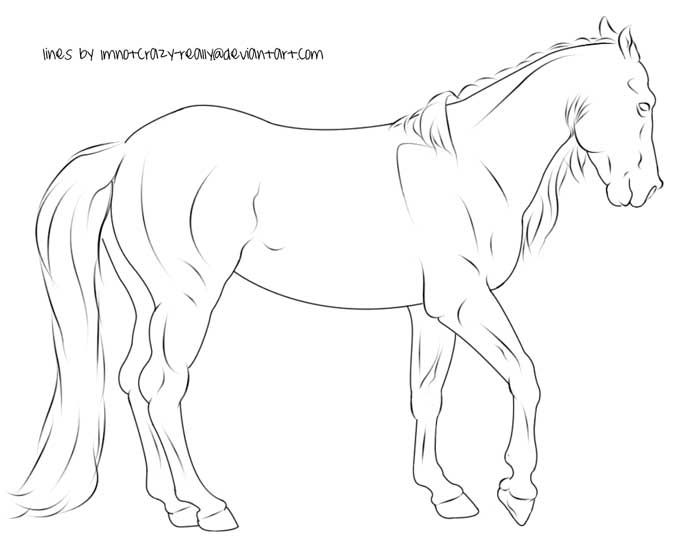 Free Lineart Walking Horse By Imnotcrazyreallydeviantart On Rhpinterest: Walking Horse Coloring Pages At Baymontmadison.com