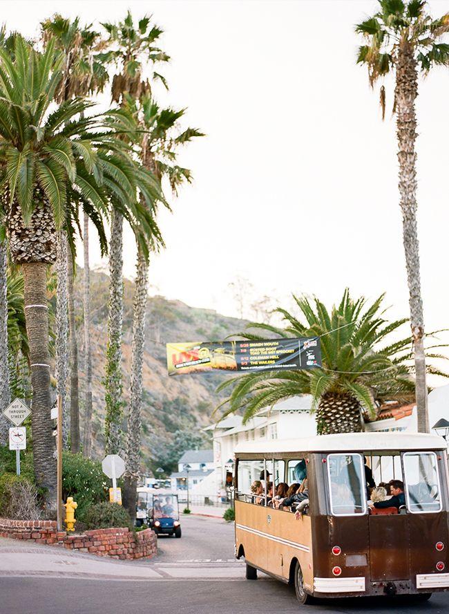 Tropical Catalina Island Wedding Honeymoon cruise