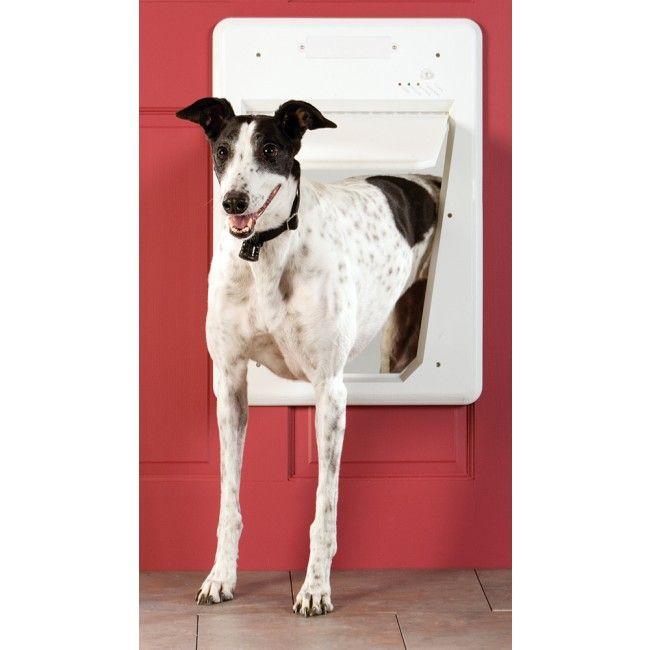 Petsafe Electronic Smart Door Dog Doors Pinterest Pet Door