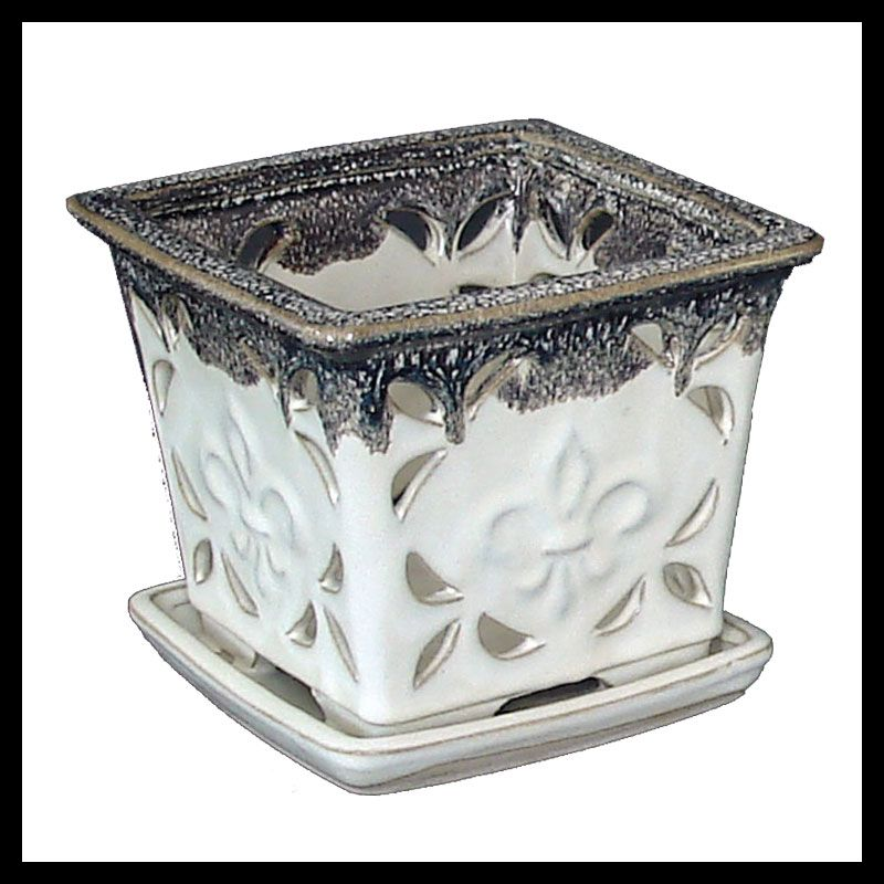Want It 5 White Square Twilight Accent Ceramic Orchid Pot 24 95 Reportme Com 5 X 5 Also Available In 7 Cera Orchid Pot Ceramic Pots Ceramics
