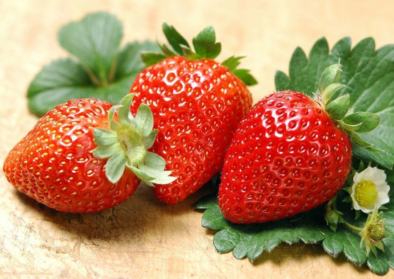 Albion Everbearing Strawberry 10 Bare Root Plants New Extra Large Sweet Hirt S Gardens Top Healthy Foods Strawberry Strawberry Fruit
