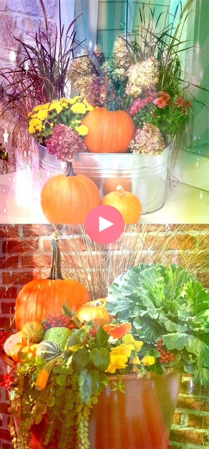 Stunning Fall Planters for Straightforward Out of doors Fall Decorations22 Stunning Fall Planters for Straightforward Out of doors Fall Decorations Save time money and ef...