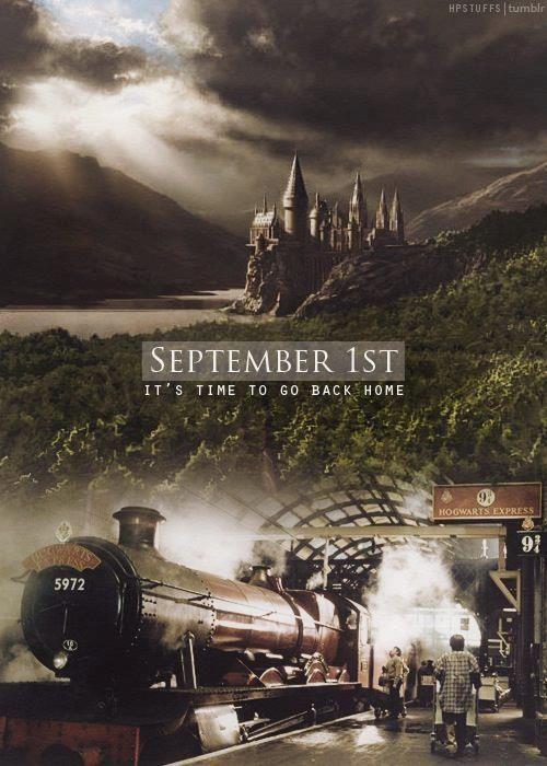 Worth Sharing Harry Potter Universal Harry Potter World Hogwarts