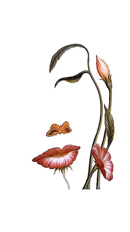 Mujer Cara D Flores Arte De Silueta Arte De Ilusion Arte De Cara