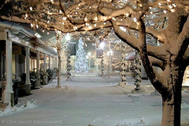 Inverno con neve