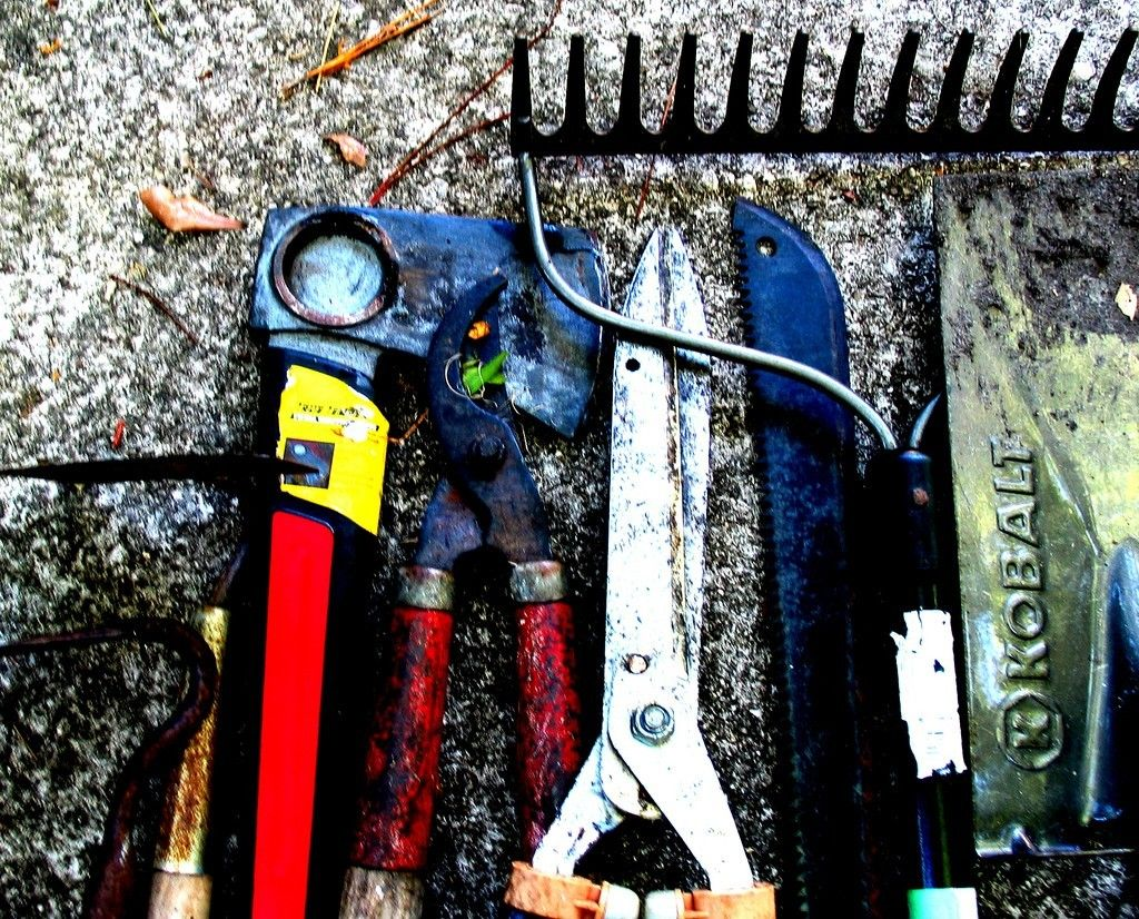 Must Have Gardening Tools Learn About Common Garden Tools And Equipment Best Garden Tools Garden Tools Lawn Garden