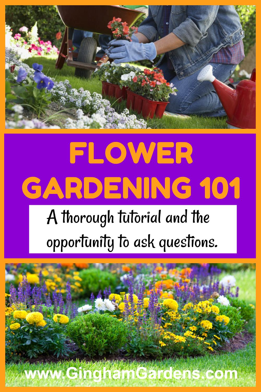 Flower Gardening 101 Gardening For Beginners Garden Maintenance
