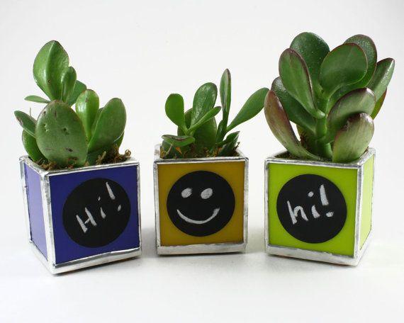 Succulent Planter Set, Indoor Garden Pot Set, Small Plant Pots Set, Plant Holder Set, Box Planter, Table Pot, Herb Planter, Flower Planter