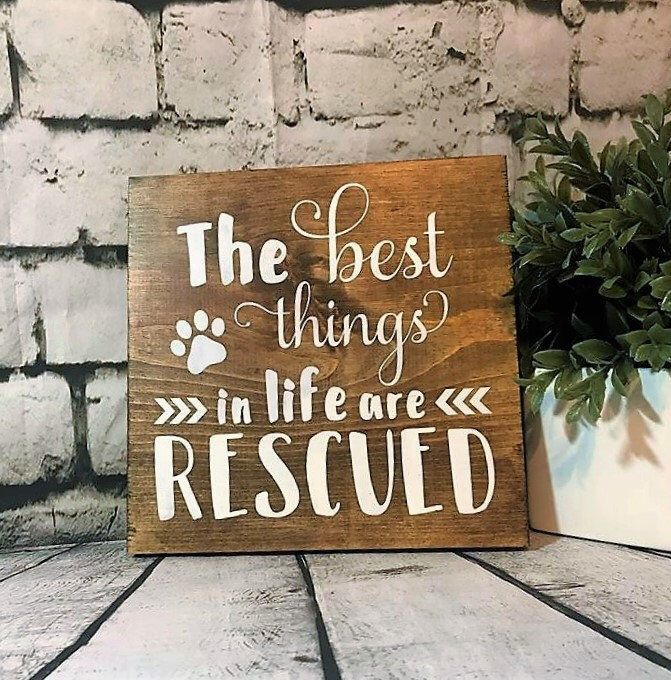 The Best Things In Life Are Rescued Wood Sign, Gift for
