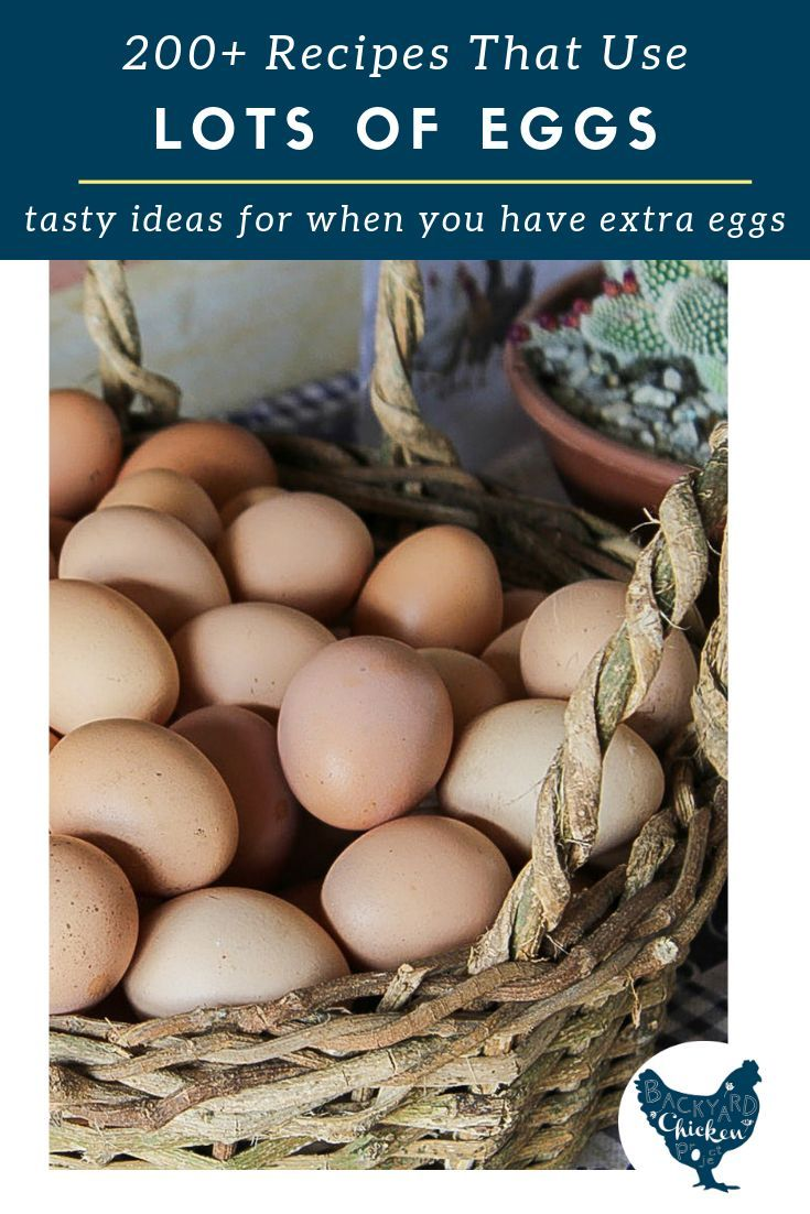 200+ Recipes that Use a LOT of Eggs images