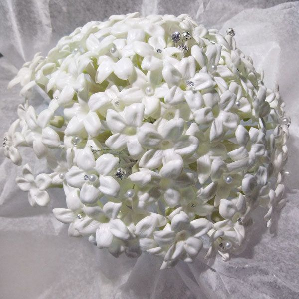 Flowers in season november november flowers in season november mightylinksfo Image collections