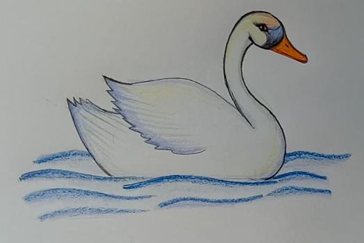 нарисованная картинка лебедь для детей - Пошук Google ...