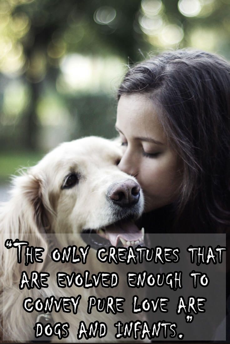 Famous People Love Quotes 30 Quotesfamous People That All Dog Lovers Can Relate To Part