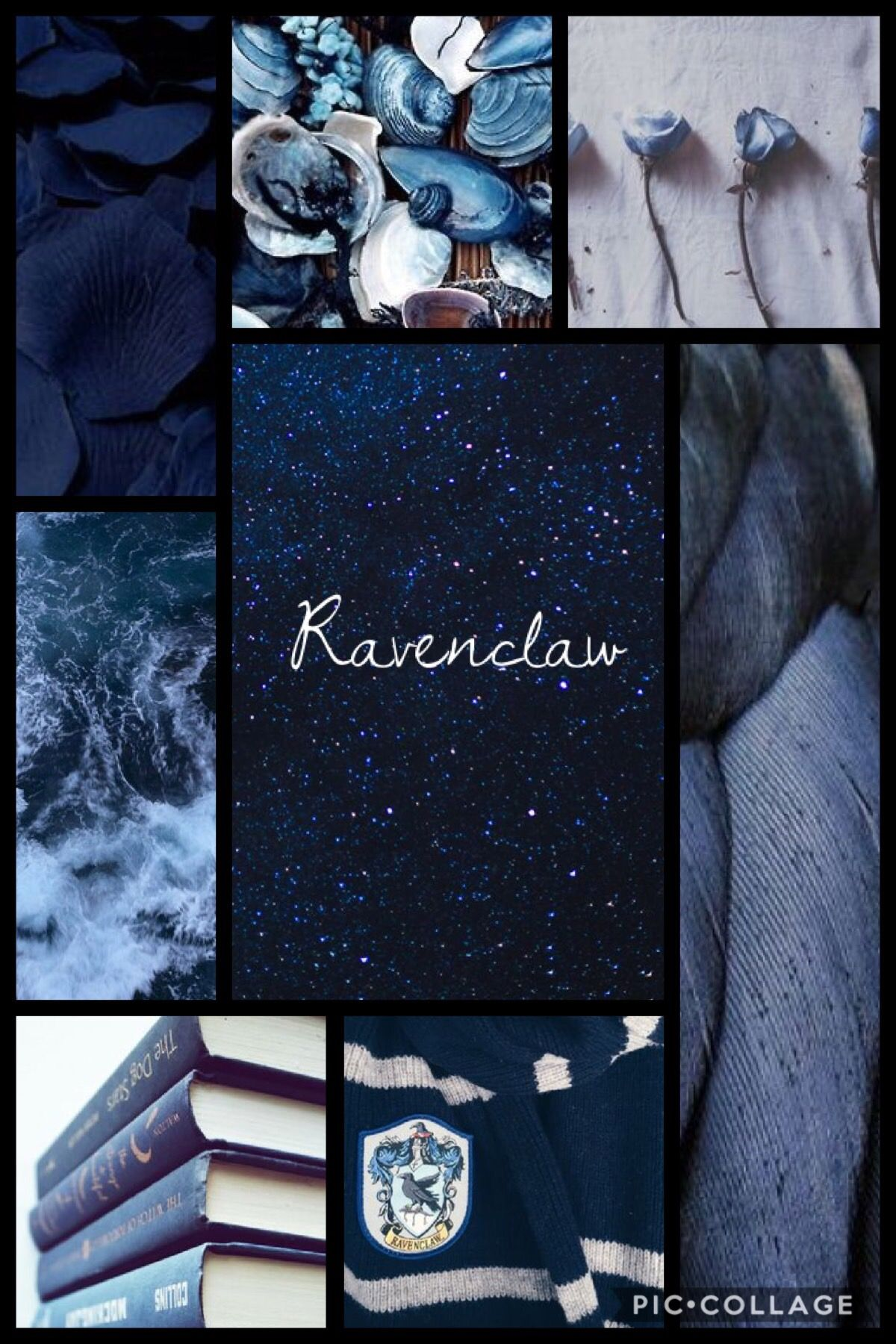 Hogwarts Houses Ravenclaw Aesthetic With Images Ravenclaw