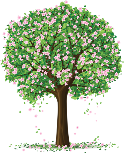 Spring trees and flowers drawings pinterest spring tree spring trees and flowers mightylinksfo