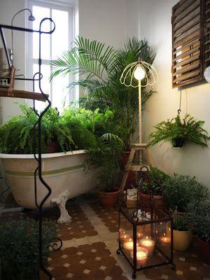 Decoracion jardines interiores. | Mi Jardin soñado | Pinterest ...