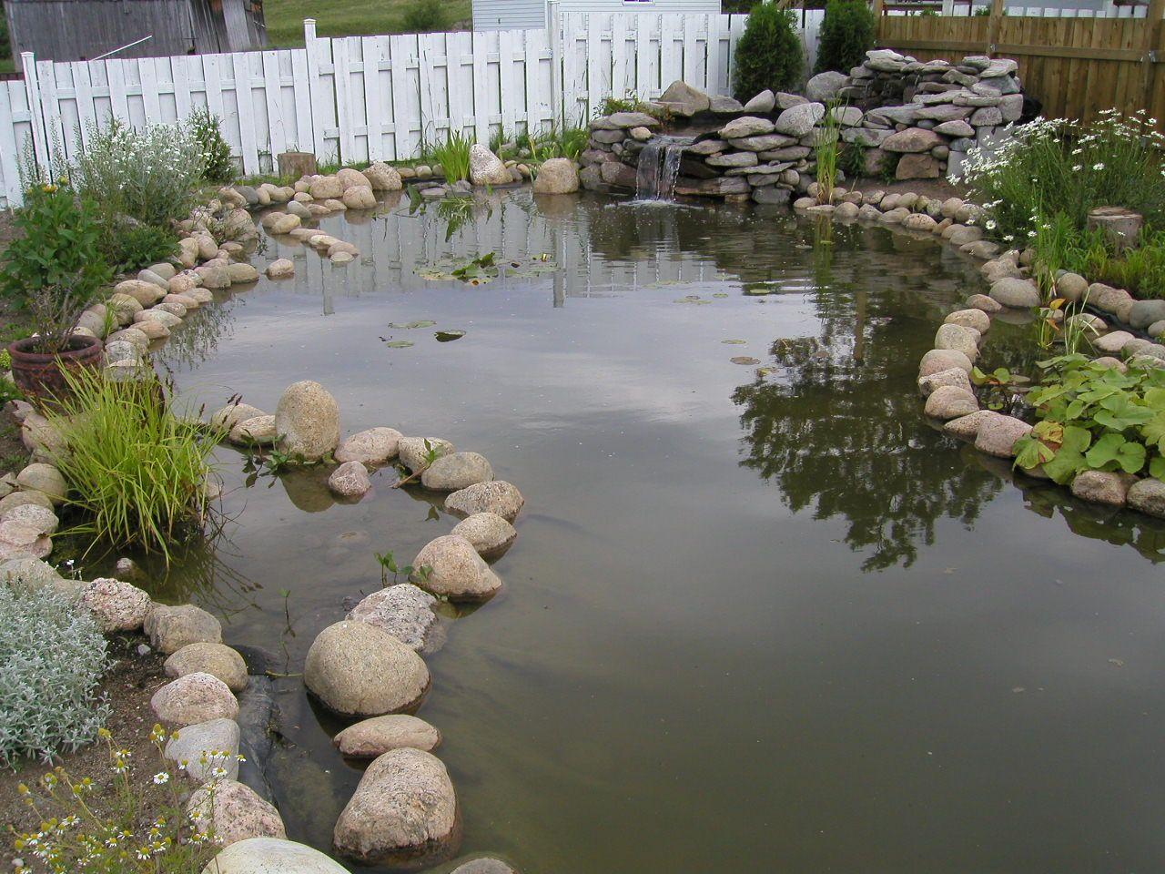20+ Grand bassin de jardin ideas in 2021