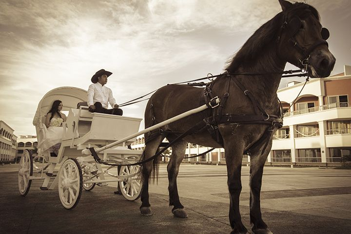 Wedding Carriage Hard Rock Hotel Riviera Maya Novia En Carruaje Rumbo Al Casamiento