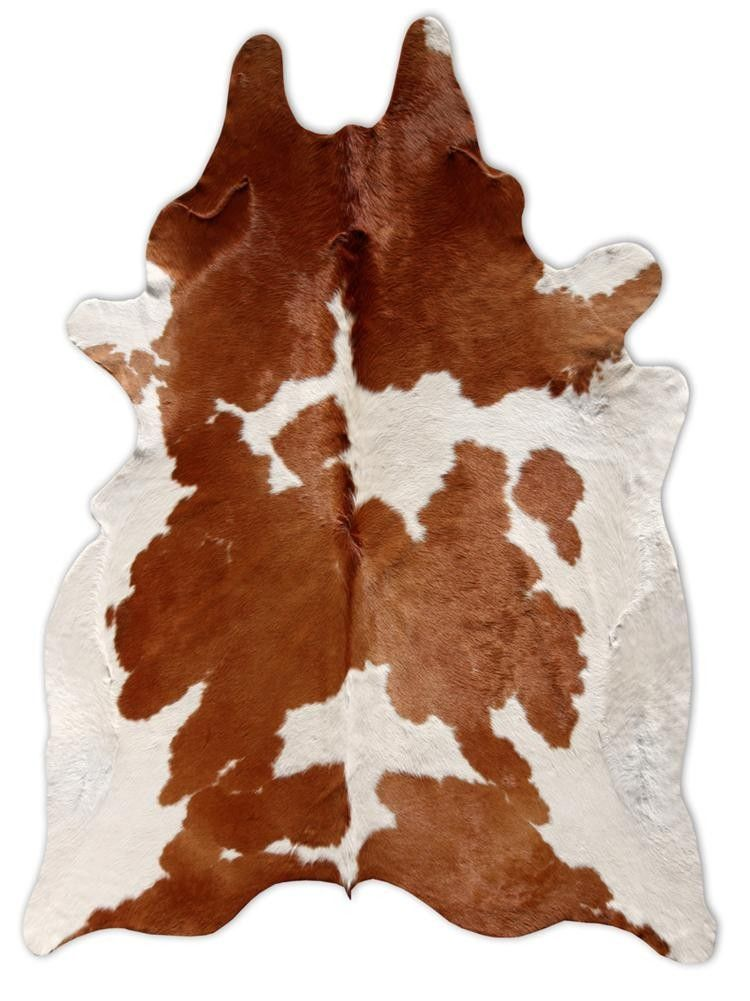 Brown White Cowhide Rug Family Room
