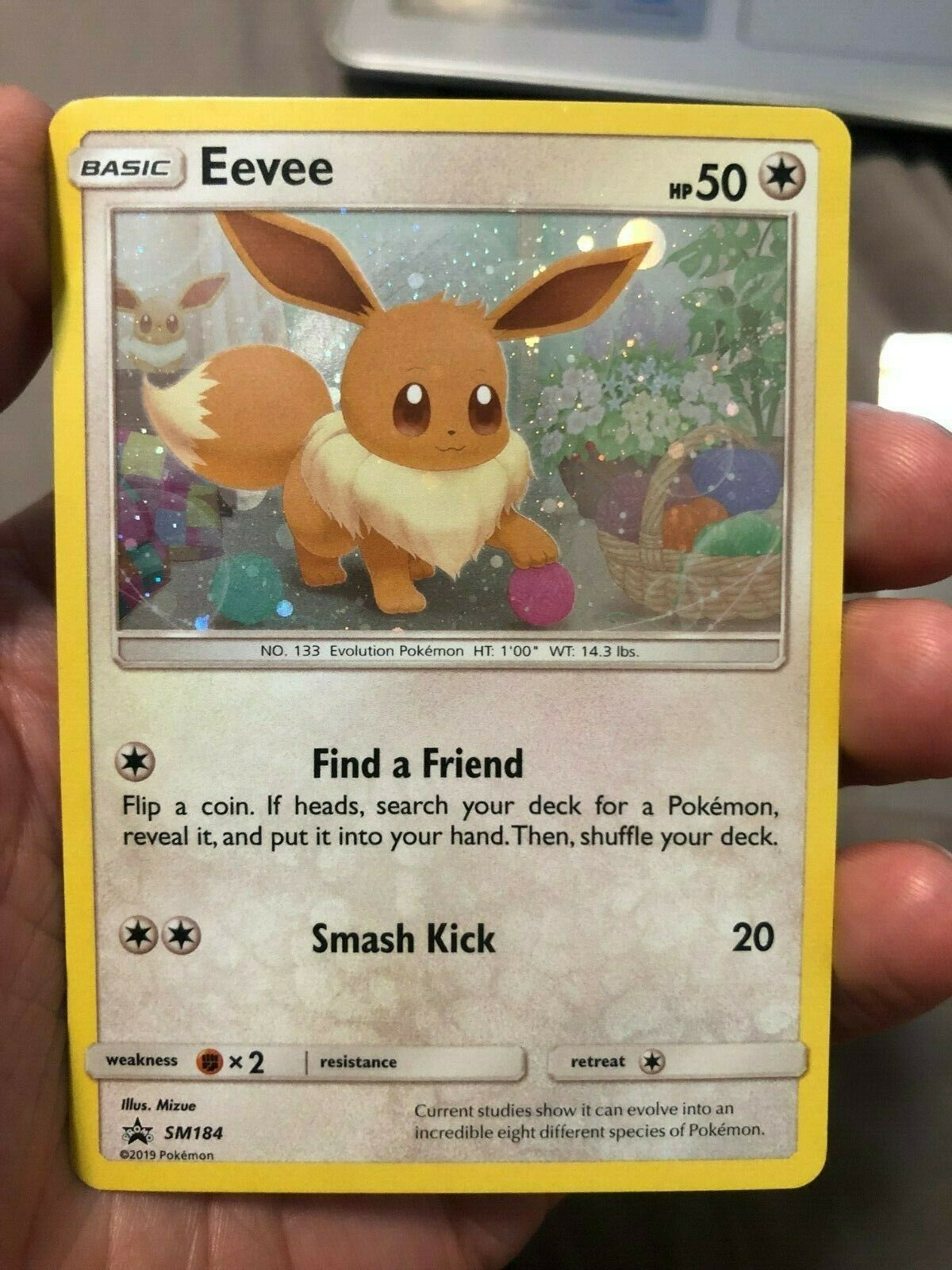 Brand New Pokémon Eevee SM184 SM Black Star Holographic Promo