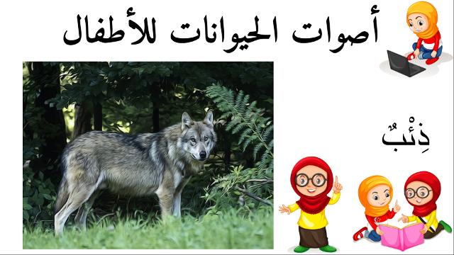 ذئب أسماء الحيوانات للأطفال وأصواتها Novelty Sign Novelty