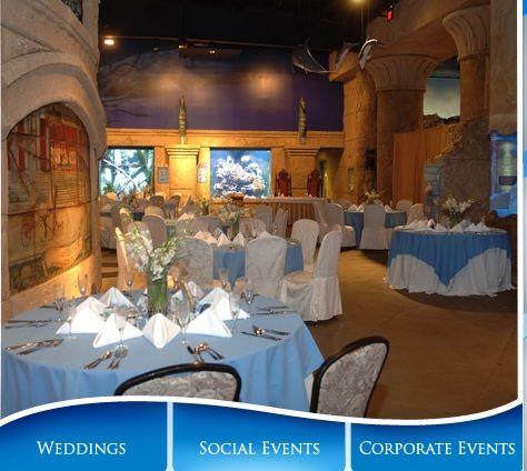 Atlantis Marine World Riverhead Ny Long Island Aquarium Events Weddings And Parties