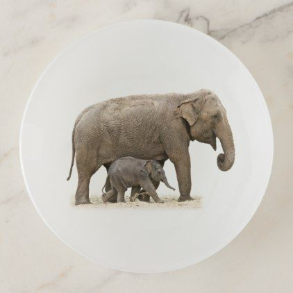 Mother and baby asian elephants trinket trays asian elephant asian elephant negle Image collections