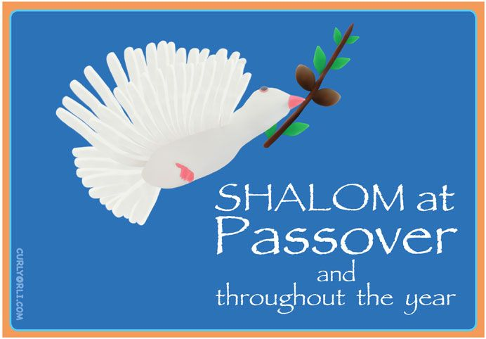 Passover for kids make your own dove of peace shalom wishing wishing you joy and many blessings at passover and throughout the year may god bless you this passover season and all through m4hsunfo