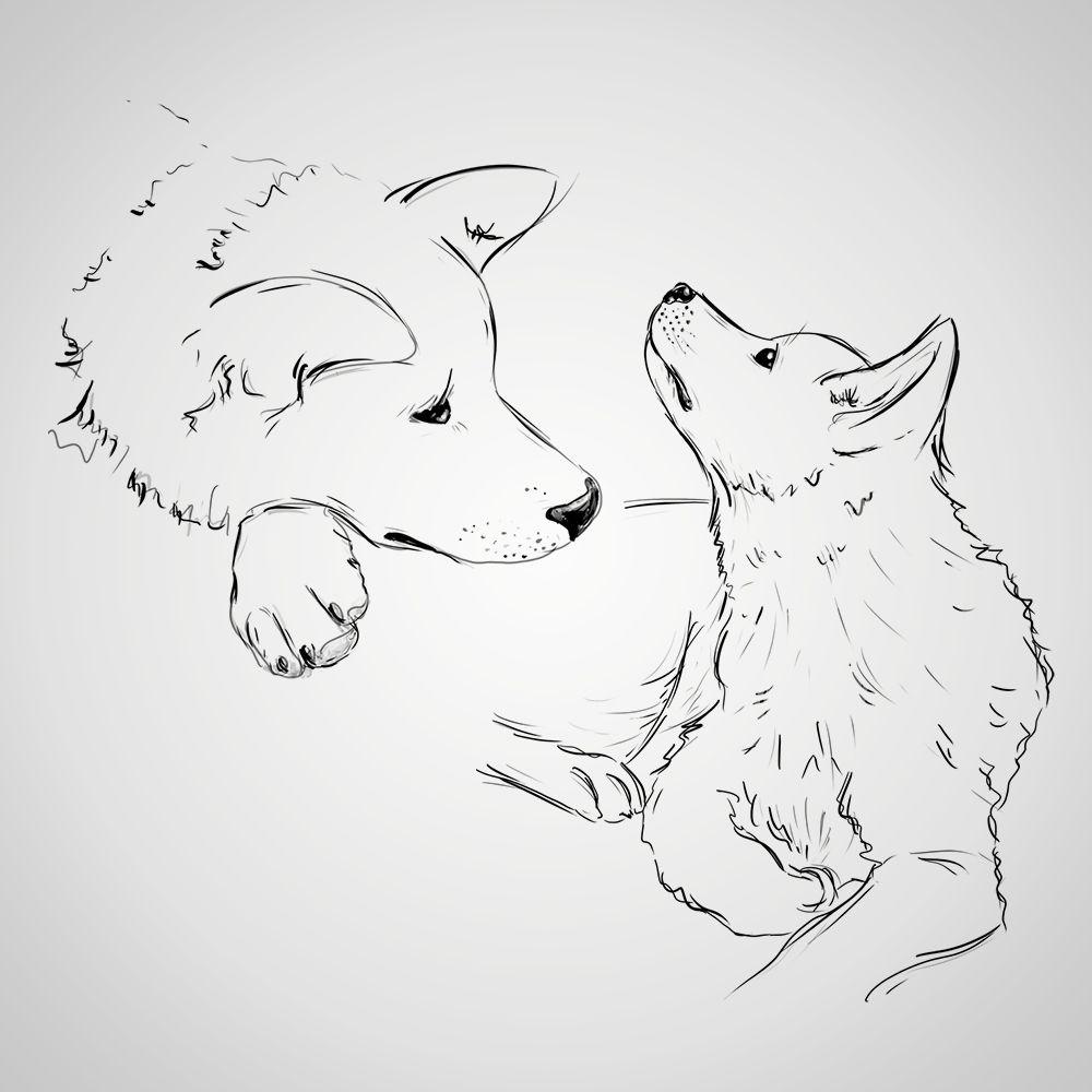 Jestes Ciekaw Co Trzymamy W Kapeluszu Dog Sketch Dog Tattoos Sketches