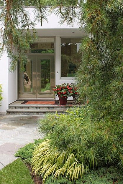 Create A Deer Resistant Modern Garden With These Landscape Ideas