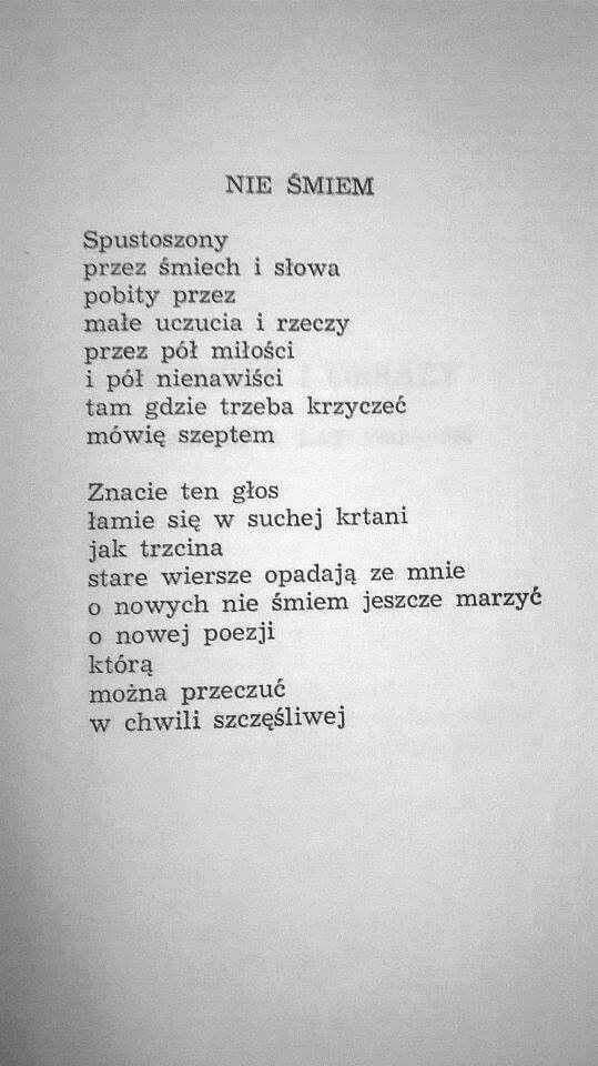 Różewicz Wiersze Prawdziwe Cytaty I Cytaty Z Poezji