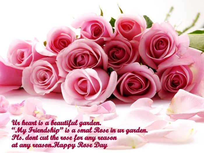 Rose Day SMS | Rose Day Quotes | Pinterest