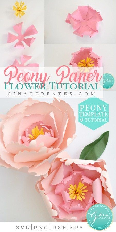 How to make a Peony Paper Flower images
