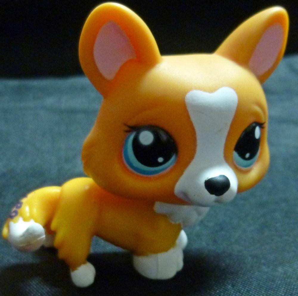 Littlest Pet Shop Corgi Dog # 1360 LPS Orange White Tan ...