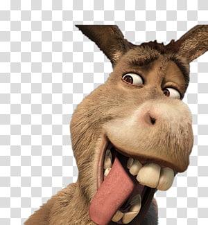 Donkey Shrek Film Series Youtube Donkey Transparent Background Png Clipart Giraffe Illustration Shrek Sheep Illustration