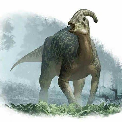 Image may contain: outdoor #prehistoricanimals #prehistoriccreatures