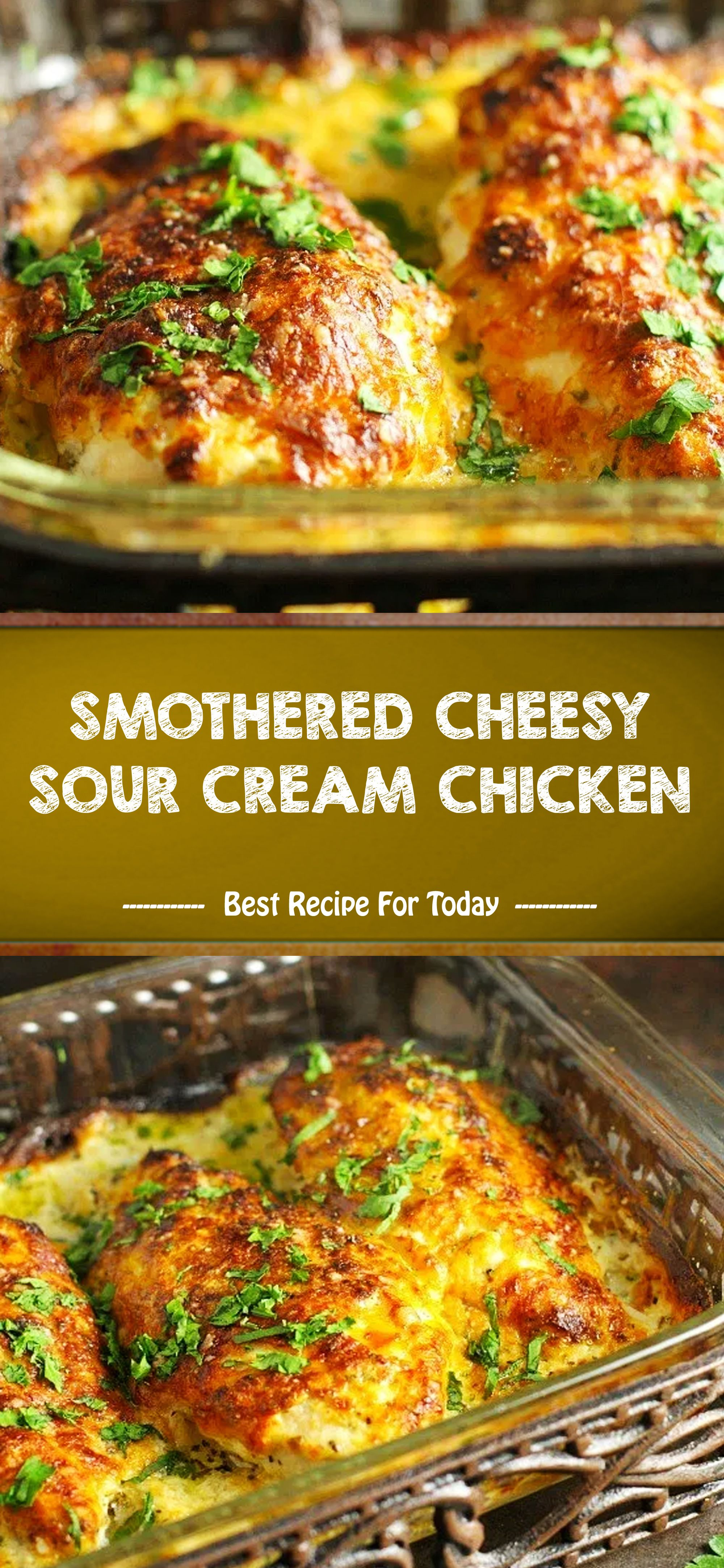Smothered Cheesy Sour Cream Chicken In 2020 Sour Cream Chicken Easy Chicken Recipes Best Chicken Recipes