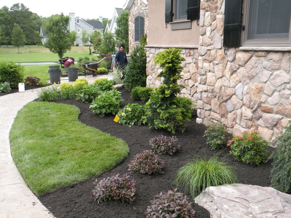 Trees mixed with shrubs privacy fence complete landscape for New landscaping ideas