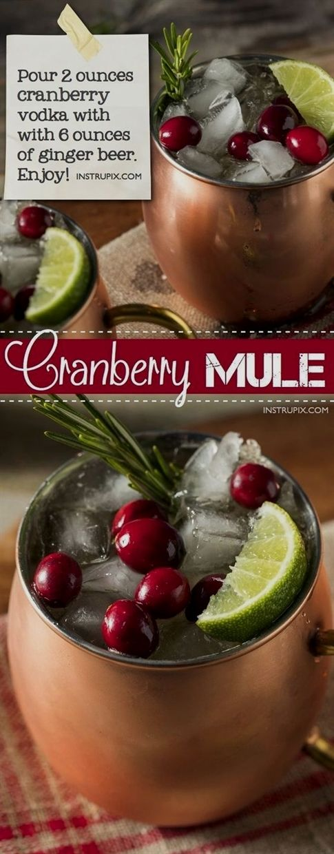 Christmas Cranberry Moscow Mule Recipe 6 easy holiday cocktail