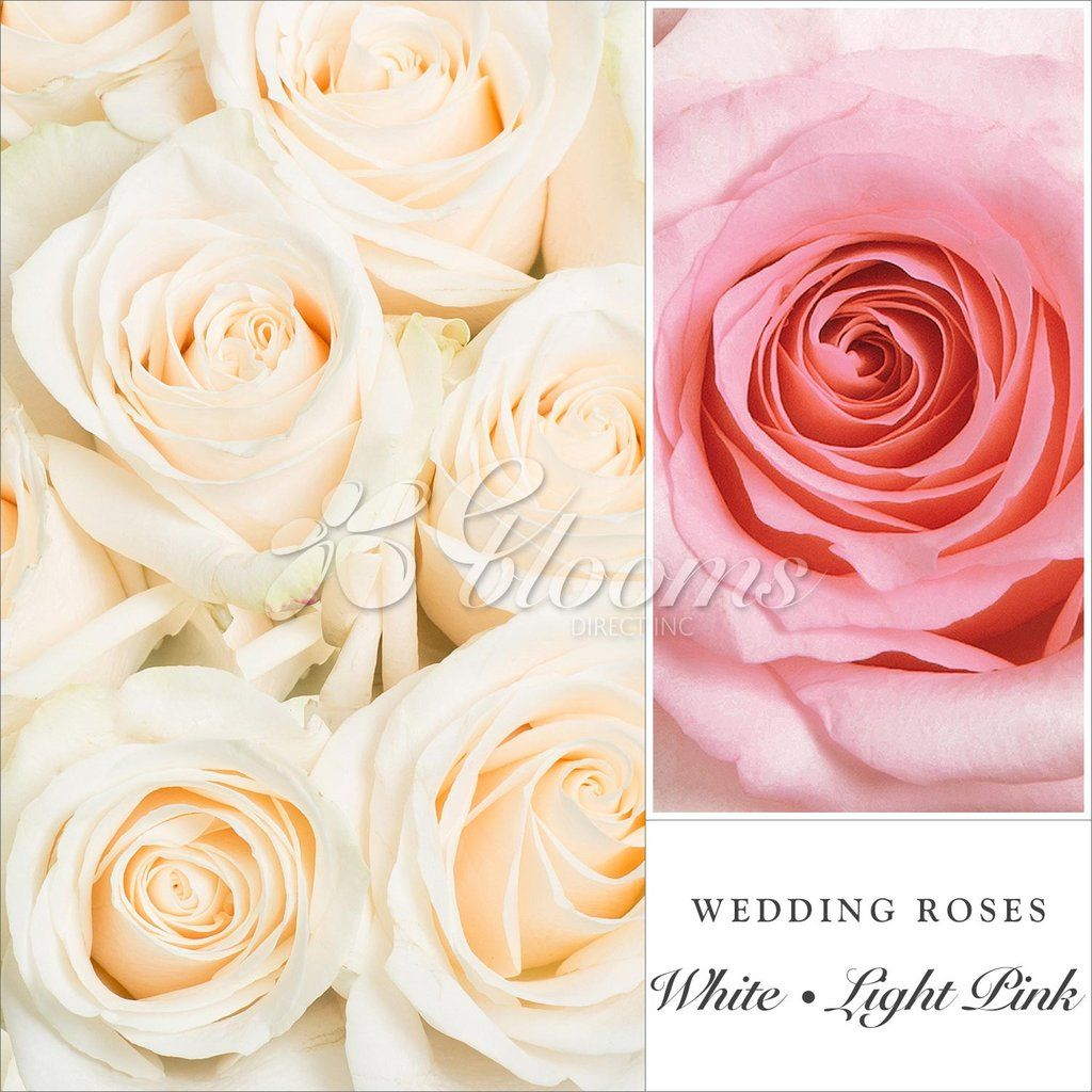 Easter wedding bouquets  Pink and White Wedding Rose Combination  Rose wedding Centerpieces